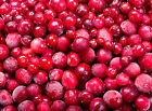 Iced Cranberry Soap / Candle Making Fragrance Oil 1-16 Ounce ***Free Shipping***