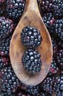 Mulberry Type Soap / Candle Making Fragrance Oil 1-16 Ounce **FREE SHIPPING**