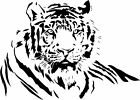 Tiger 2...Wall Art / Quotes, Bedroom Stickers, Wall Decal, Vinyl graphic