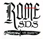 ROME SNOWBOARD DESIGN SYNDICATE SDS MEDIUM STICKER/DECAL CHOICES, NEW!