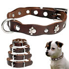 Paw Studded Genuine Leather Dog Collar For Small Puppy Dog Chihuahua XXS XS S M