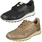 Ladies Clarks Floura Mix Leather Casual Lace Up Trainer Shoes D Fitting