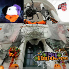 Halloween+Decoration+Spider+Web+with+2+Spiders+Stretchable+Cobweb+Fancy+Dress