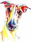 Greyhound Whippet Lurcher art print painting poster - Mounting Options Available