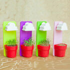 Best Rainy Hanging Wall-style Cloud Flower Pot Crafts Potted Desktop Grass Doll