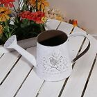 Metal Plant Container Mini Vintage Flower Vase Balcony Decorative Watering Can