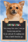 Chihuhua 3D Home Hang Up Sign - Available in Long Hair or Short Hair