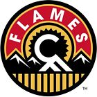Calgary Flames NHL Decal Sticker Car Truck Window Laptop Wall $10.99 USD on eBay