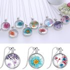 Natural Real Dried Flower Resin Round Glass Floating Locket Pendant Necklace New