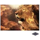 Fiery Lion King Of The Jungle Poster Quality Print 260gsm Premium Poster Paper