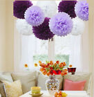 9 Pcs Mixed Tissue Paper Pompoms Pom Poms Hanging Garland Wedding Party Decor
