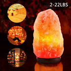 Himalayan Salt Lamp Natural Crystal Rock Shape Dimmer Switch Night Light 2-22LBS
