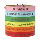 Personalized Dog Collar - Engraved Soft Leather in Small, Medium or Large Size,
