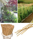 Heavy Duty Natural Wooden Bamboo Canes Plant Support Garden Canes Pole Thick 7ft