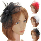 1pc Women Fascinator Flower Feather Corsage Bridal Wedding Races Hair Clip US