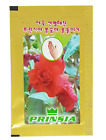 Princia Nail Care Polish, Manicure Of Dyeing with Garden balsam K beauty