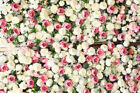 5x7FT Valentine's Day Theme Photo Studio Prop Flower Background Backdrop Vinyl
