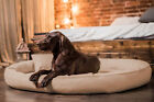 Tierlando Orthopedic Dog Bed Gilbert Ortho Hair-Protect Latex Faux Lether