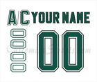 Dallas Stars 1995-99 White Jersey Customized Number Kit un-stitched $34.99 USD on eBay