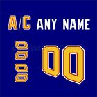 St. Louis Blues 1995-98 Vintage Royal Blue Jersey Customized Number Kit un-sewn $34.99 USD on eBay