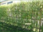Living fence/hedge for summer or winter and visual or noise reduction 2-50m long