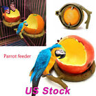 Orange/ Persimmon Shaped Birds Feeder Pet Feeders Food Container Drinking Bowls