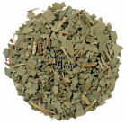Boldo Dried Leaves Leaf Herb Herbal Tea 300g-2kg - Peumus Boldus