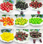 50 PCS Artificial Decorative Plastic Fruit Home Decor Garden House Kitchen