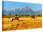 Horses and Mountains Landscape Canvas Wall Art Picture Print