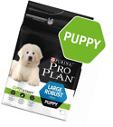 PRO PLAN Large Robust Puppy Dry Dog Food Chicken 3kg