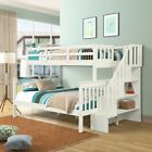 Bunk Beds Twin over Full Stairway Bunk Bed with Trundle Kid Teen Adults Bedroom