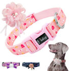 Nylon Flower Studded Dog Collar Adjustable Large Dogs Necklace for Dog Shows SML