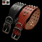 Heavy Duty Rivets Studded Genuine Leather Dog Collar for Small Large Dogs Brown
