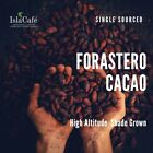 Raw Cacao Beans Mexican Oaxacan Forastero Single Sourced Shade Grown Small Farm