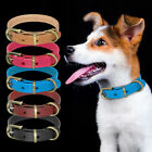 Real Leather Dog Collar Plain Small Medium Dog Collar Metal Buckle for Chihuahua