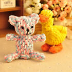 Dog Teddy Tough Strong Chew Knot Toy Puppy Pet Healthy Teeth Bear Cotton Rope