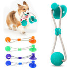 Pet Molar Bite Dog Ball Chew Toy Tooth Cleaning Suction Cup Interactive Puppy