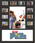 The Secret Life Of Pets Replica Film Cell Presentation 10x8 Mounted 10 cells