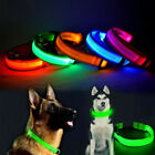 USB Rechargable LED Dog Pet Collar Flashing Luminous Safety Light Up Nylon