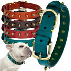 Spiked Studded Leather Dog Collar Adjustable Strong for Xsmall to X-Large Dogs