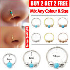 Nose Ring Eyebrow Cartilage Tragus Septum Helix Lip Earring Hoop Ball Stud