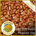 Bird Whole Peanuts 5KG - Quality Fresh Feed for Wild Birds Garden