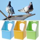 Pigeon Feeder Water Feeding Food Dispenser Pet Bird Parrot Container Dustproof