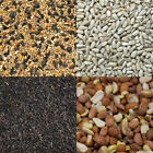 Wild Bird Seed Sunflower Niger Food Common Mix Feed Mixture Peanuts Suet Garden