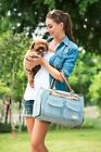 Blue Vertical Striped Fashion Pet Dogs Carrier Bag Fashion Small Puppy Dog Bag