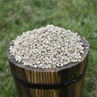 Sunflower Heart Chips for Wild Birds - Bulk Options - High Quality
