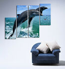 Jumping Dolphins Modern Decor Canvas Print Set Of 4 With Wall Clock FRAMED