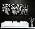 Zebras Drinking Water Modern Decorative Canvas Print Set Framed & READY TO HANG