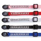 East Side Collection Rhinestone Cat Kitty Collars Very Cute Glimmer & Shine New