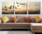 Unique Modern Wall Clock On Set Of 3 Canvas Print Birds In Sky 4 Different Sizes